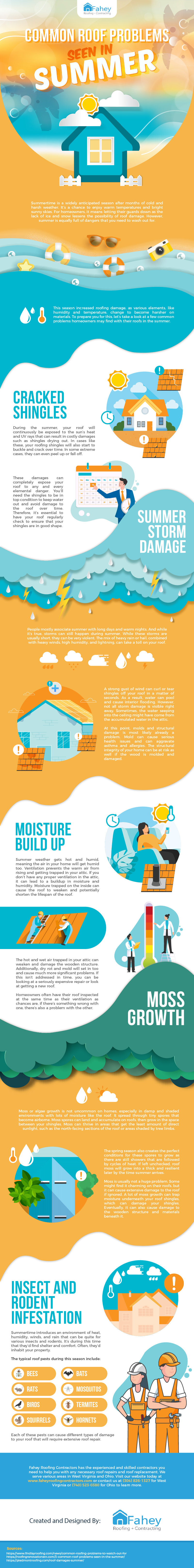 Common Roof Problems Seen in Summer infographic